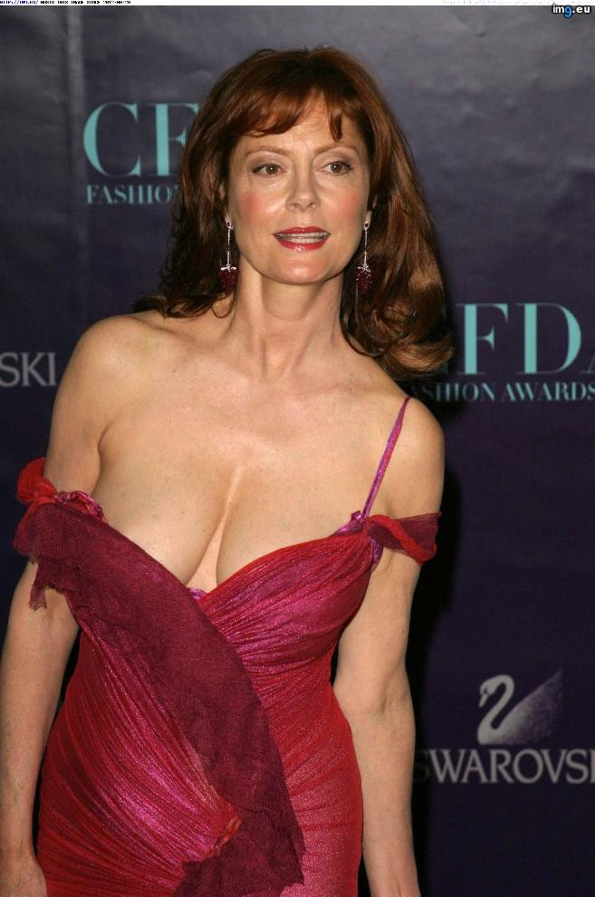 Susan Sarandon 3 (hot photo)